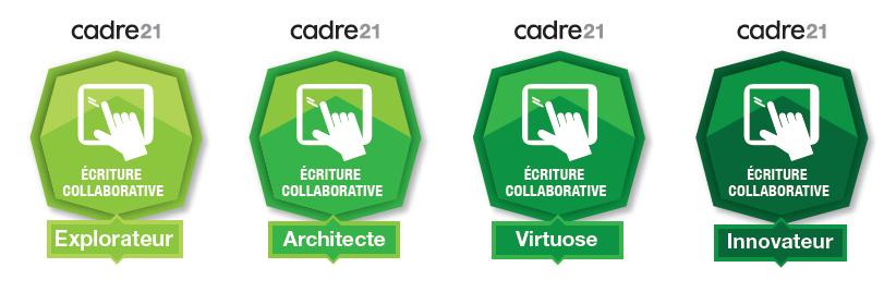 4-niveaux-badges-competences-Cadre21